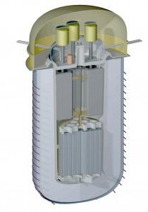 Concrete containment silo enclosing the IMSR unit