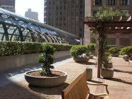 rooftopgarden2